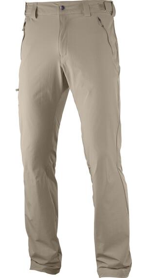 Salomon Wayfarer lange broek Heren beige